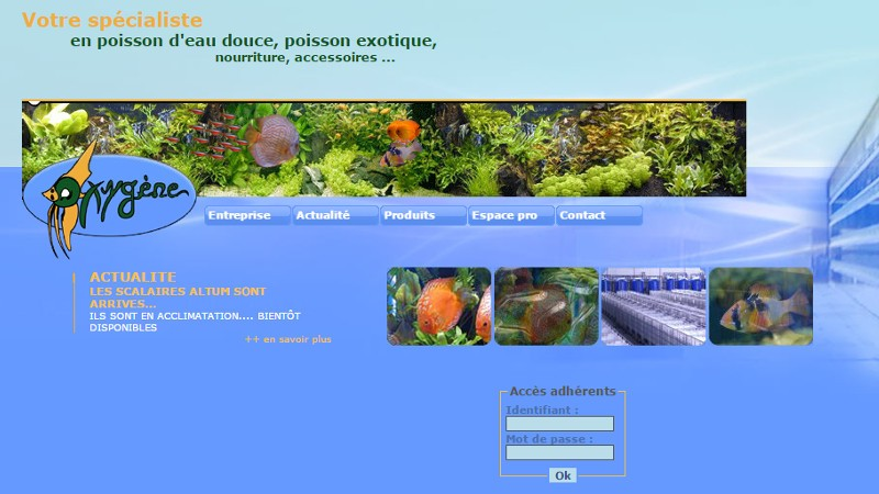 creation site web Oxygène