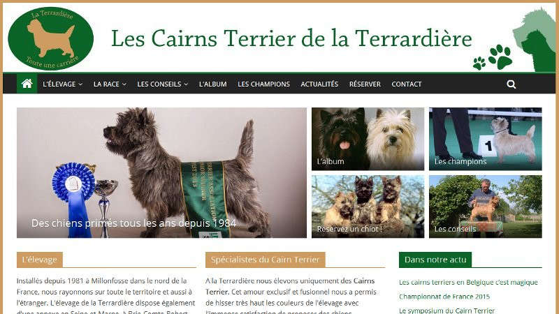 creation site web Terrardiere