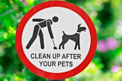 Ubérisez vos crottes de chien